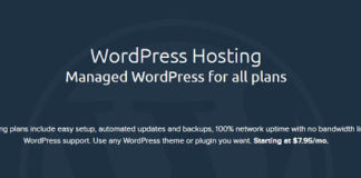 Worpress web hosting - Dreamhost Coupon