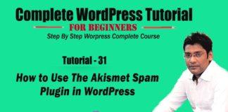 How to Use The Akismet Spam Plugin in WordPress